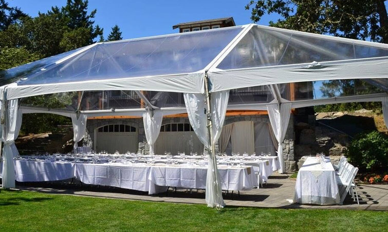 Clear Roof Panels Black And White Party Rentals